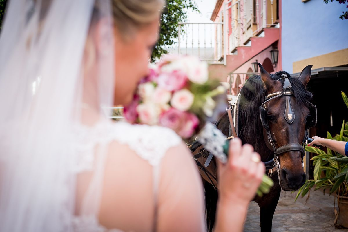 boda en el paraíso